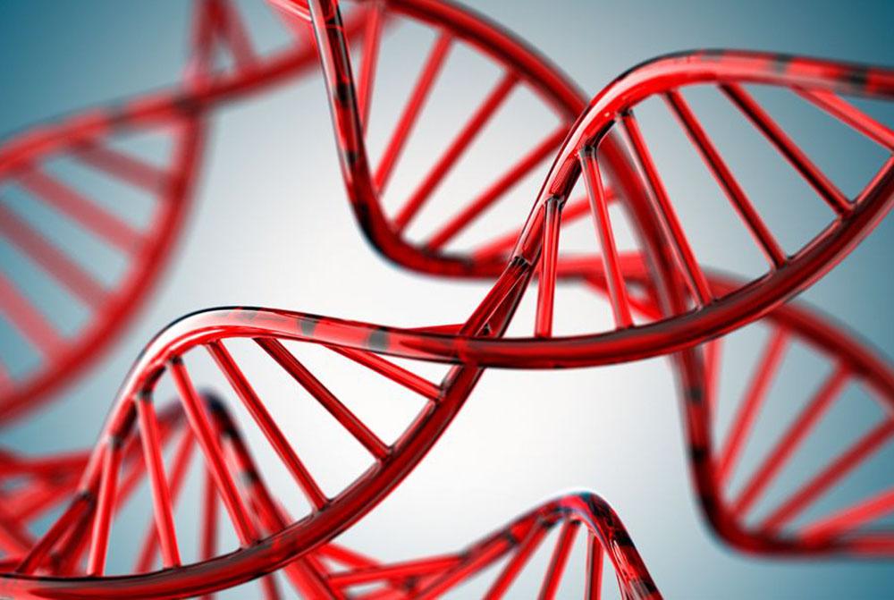 Ученые Нашли Способ Полностью Вылечить ВИЧ